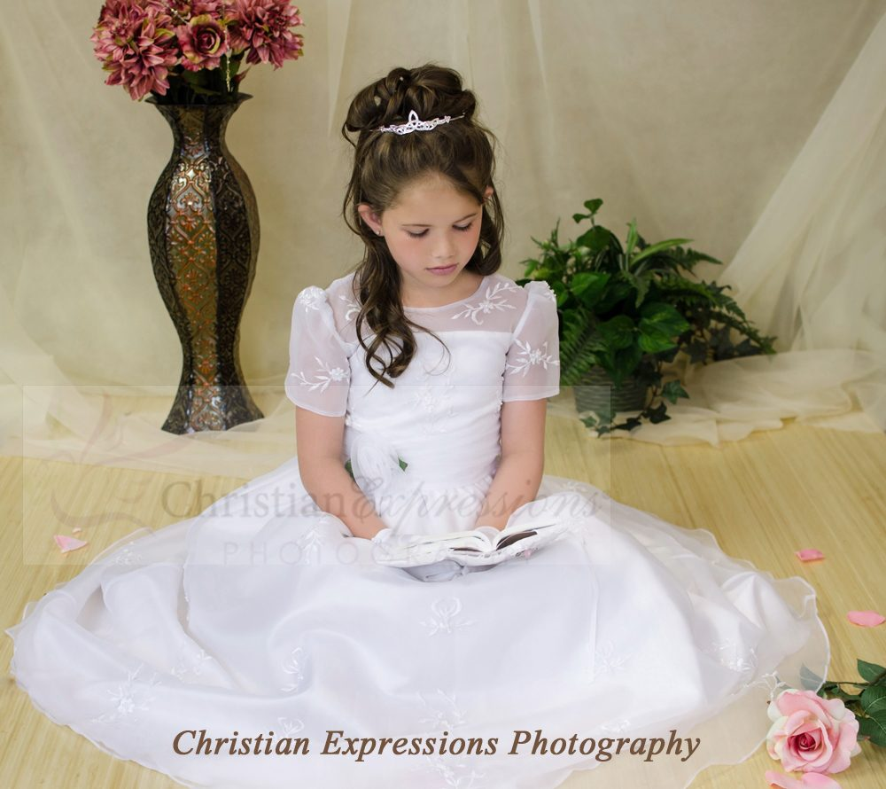 Embroidered organza long length first communion dress