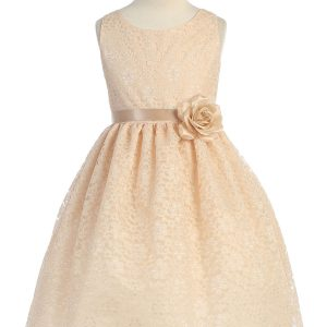 Champagne Flower Girl Dress Floral Lace Overlay