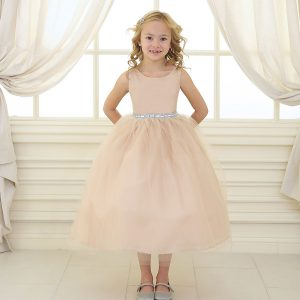 Flower Girl Dress with Shiny Accent Trim Champagne