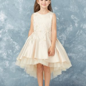 Ivory Flower Girl Satin High Low First Communion Dress